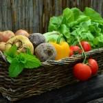 Pěstujete zeleninu? Vysaďte ji letos správně!