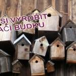 Jak si doma vyrobit ptačí budku