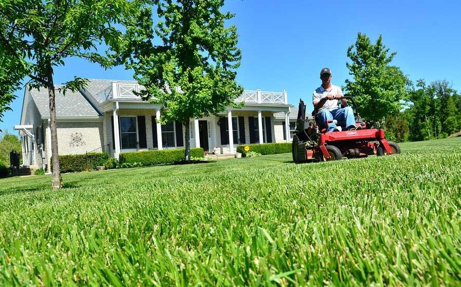 Jak na údržbu trávníku? Jen sečení nestačí!
