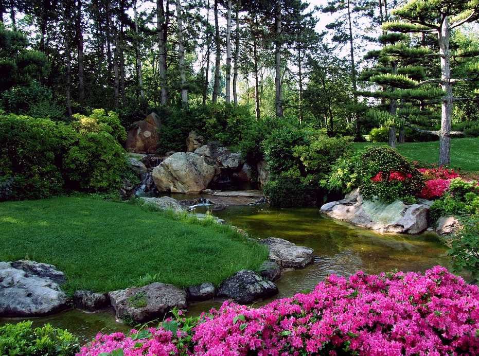 Z kvetoucích keřů se nejlépe hodí azalky a rhododendrony, pixabay.com