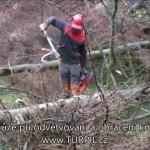 Dřevorubecká lopatka