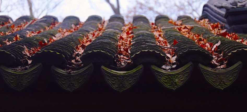 Před zimou je třeba okapy vyčistit, pixabay.com