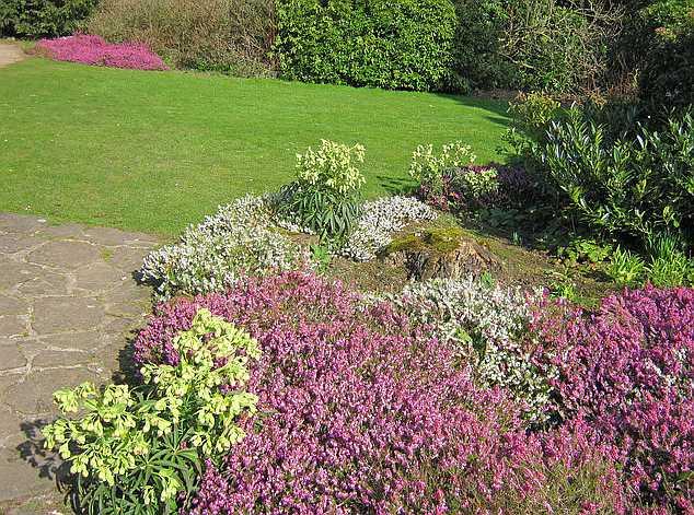 Zahradní vřesoviště, geograph,org.uk