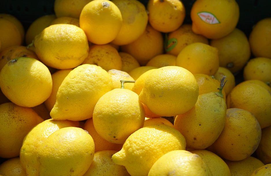 Vlastní zásoby citrusů si takto bohužel nevypaěstujete, pixabay.com