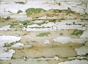 Tento povrch se po oškrábání bez penetrace neobejde, freeimages.com Dóra Kalmár