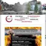 Služby hodinového manžela Oblasní spolek ČČK – Ústí nad Orlicí
