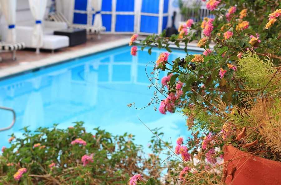 Příprava bazénu na sezónu, pixabay.com