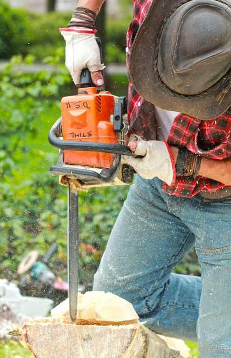 Při práci s motorovou pilou může protipořezové oblečení ochránit zdraví, pixabay.com