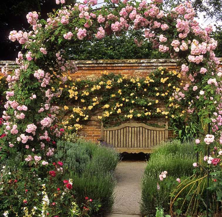 Popínavé růže umí půvabně zkrášlit vchod do zahrady, flickr.com