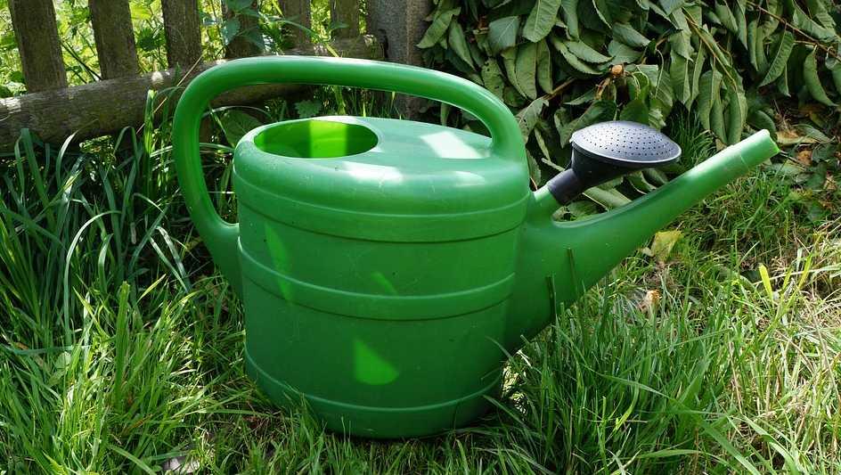 Zvykněte si podzimní péčí o zahradu skloubit také s vydatnou zálivkou, pixabay.com