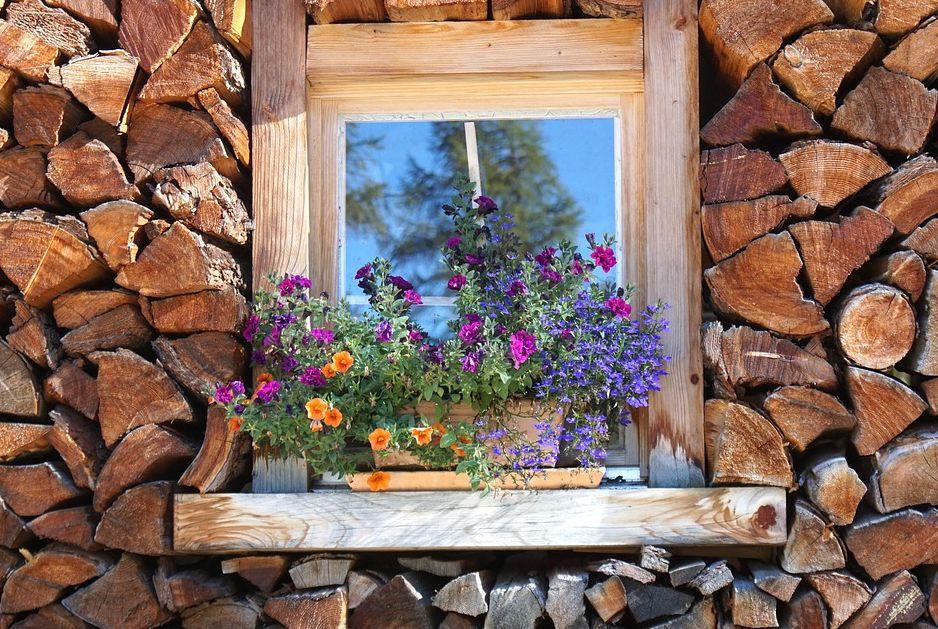 Některé rostliny nemusíte z balkónu vůbec odnášet, freegreatpicture.com