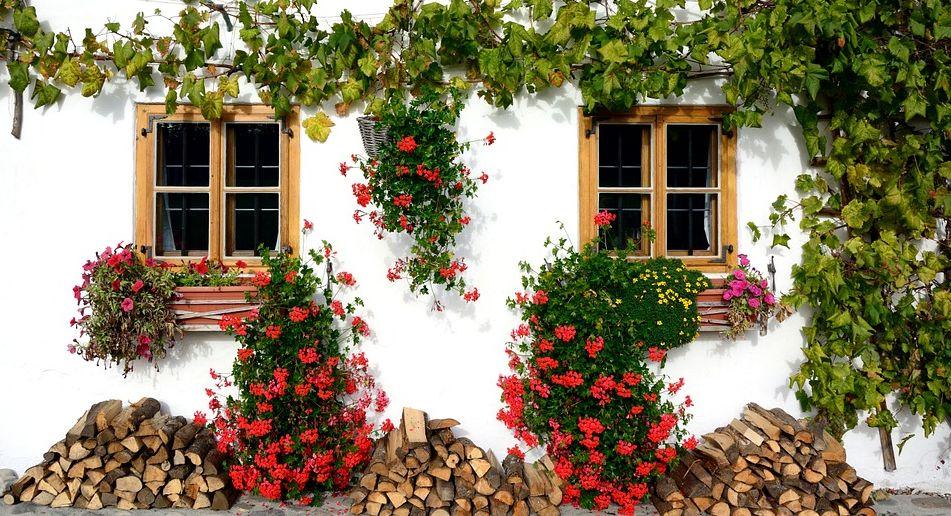 Vaše odměna na jaře bude sladká, pixabay.com